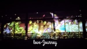 【大阪発・ハピネスツアー】二条城「世界遺産登録25周年記念FLOWERS BY NAKED」の見学